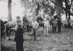 Sraz lesáckých koní na Stanech v Náměšti nad Oslavou