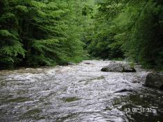 V půli trasy Náměšť - Kuroslepy začíná řeka zrychlovat adosahovat vodácké obtížnosti WW II, místy ažIII.